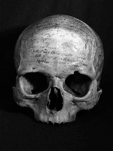 Descartes skull